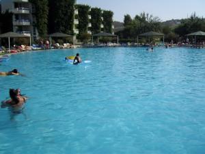 mihai_vasilescu_piscina