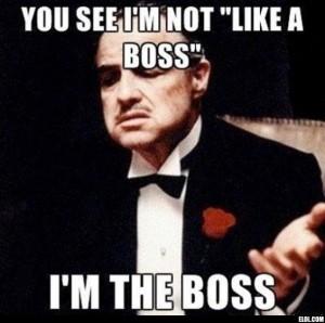mihai_vasilescu_boss