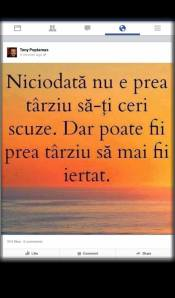 mihai_vasilescu_poptamas_citat