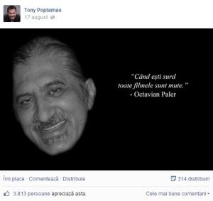 mihai_vasilescu_poptamas_paler