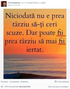 mihai_vasilescu_fi