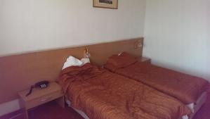 mihai_vasilescu_hotel_sofia (1)