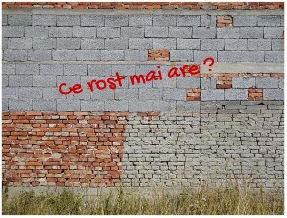 mihai_vasilescu_rost
